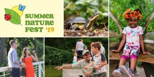 Summer Nature Fest 2019 with Peggy Notebaert Nature Museum @ Peggy Notebaert Nature Museum